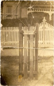Memorial Tree for John J. H. Williams, planted at Ballarat