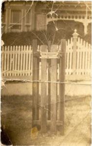 Memorial Tree for John J. H. Williams, planted at Ballarat