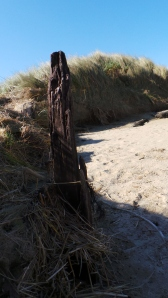 Long buried fence marker exposed by yesterday's tide. picture by Jenny Fawcett 28 Aug.2014