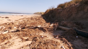 Typical rubbish dump after the tides at Killarney. picture by Jenny Fawcett 28 Aug.2014