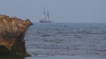 The replica tall-ship Enterprise passing Warrnambool's Middle Island for Port Fairy. Picture by Jenny Fawcett 19 Nov 2015